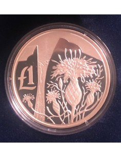 Cyprus 1 Pound Silver Proof Coin 2006 Cyprus Wildlife Series